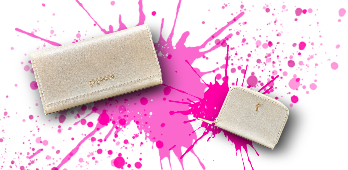 Portafoglio e portamonete in burma ora su sfondo colorato